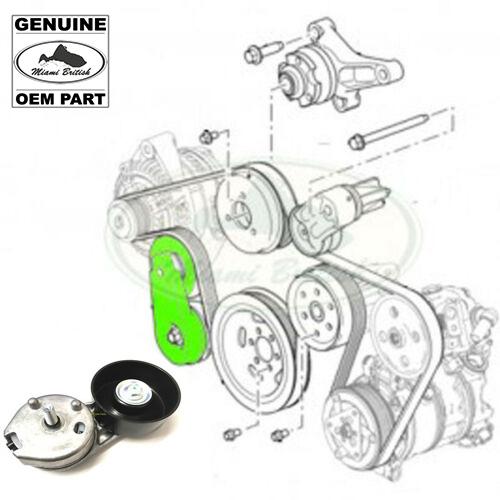 Rubber 103 Length D/&D PowerDrive 5L1030 Bear CAT Replacement Belt